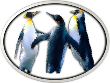 Picture Frame Penguins